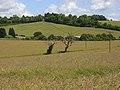 Farmland, Stokenchurch - geograph.org.uk - 882148.jpg