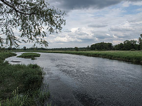 Fawn River Florence Township Michigan.jpg