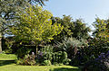 Feeringbury Manor flower herbaceous shrub border, Feering Essex England 4.jpg