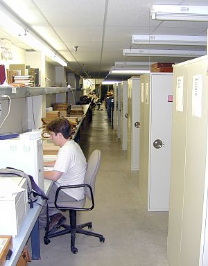 Herbarium - A large herbarium may have hundreds of cases filled with specimens.
