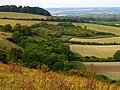 Fields and Woodland near Bottomstead Farm - geograph.org.uk - 62399.jpg
