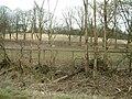 Fields in March - geograph.org.uk - 156689.jpg