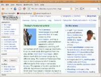Firefox 3.png