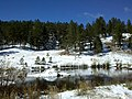 First Snow at lake in Bergen Park - panoramio.jpg