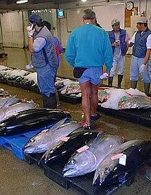 fish auction in honolulu hawaii