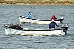 Fishing Boats - Rutland Water (29020826610).jpg
