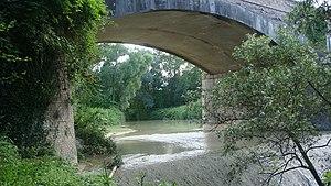 Cesano (river) - Image: Fiume Cesano