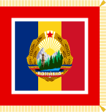 Flag of Chairman of Councils of State and of Ministers of Romania.svg