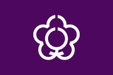 Flag of Tenri, Nara.png