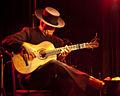 Flamenco guitar player.jpg