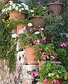 Flower Pots (21663518802).jpg