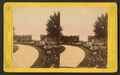 Flowers in Howard cemetery, New Orleans, La, by Woodward Stereoscopic Co..png