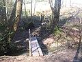 Footbridge in Sproud's Wood - geograph.org.uk - 1732430.jpg