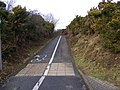 Footpath-Cycleway Martlesham Heath - geograph.org.uk - 1132710.jpg