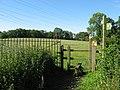 Footpath across fields near Radyr - geograph.org.uk - 2441630.jpg