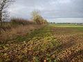 Footpath away from Carlton Wood - geograph.org.uk - 1078638.jpg