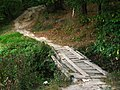 Forest entrance - Кладка и вход в лес - panoramio.jpg