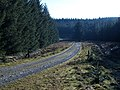 Forest road, Howcleugh Forest - geograph.org.uk - 686336.jpg