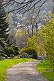 Fruehling in Siegen - panoramio (5).jpg