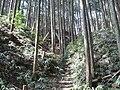 Fukusuminjo06.jpg