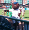 Fungo - Fisher Cats mascot.png