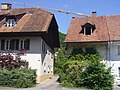 GansingerstrRemigen-20120525i.jpg