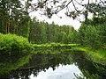 Garkalnes novads, Latvia - panoramio (24).jpg