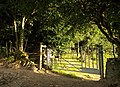 Gate near West Ogwell - geograph.org.uk - 905632.jpg