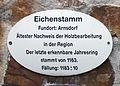 Gedenktafel Schlosspark Senftenberg (Senftenberg) Eichenstamm .jpg