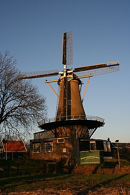 Bernisse Molen in de late middag
