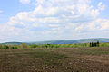 Gfp-pennsylvania-elk-scenic-trail-fields-and-hills.jpg