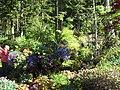 Glacier Gardens outside Juneau, features plantings in upturned trees.jpg