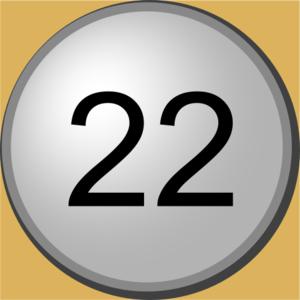 Go 22