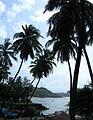 Goa - Scenes (10).JPG