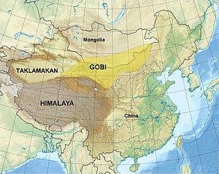 desert in Mongolia and China