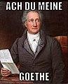 Goethe (Stieler 1828)-Meme.jpg