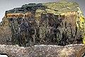Goethite (Schley Mine, Gilbert, Minnesota, USA) 5.jpg