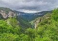 Gorges du Tarn 06.jpg