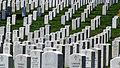 Grafstenen op Arlington National Cemetery.JPG
