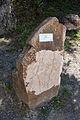 Granite, Pátka.jpg