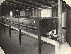 Grantham Soldiers Settlement Estate - Grantham Stud Poultry Farm, incubator house (7506039016).jpg