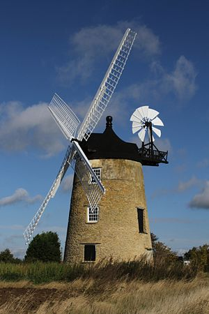 Great Haseley - Great Haseley tower mill