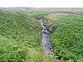 Great Blowing Gill Beck - geograph.org.uk - 495202.jpg