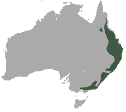 Greater Glider area.png