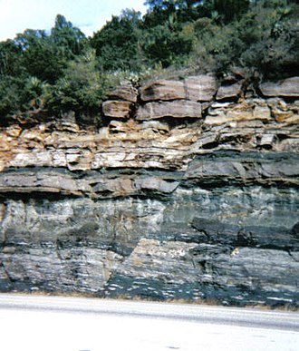 Greensand - A roadcut within the Llano Uplift on Texas Highway 1431 about 18 km northwest Marble Falls, Texas that exposes greensand of the Lion Mountain Sandstone (Cambrian) in the lower unit. Notice the normal fault cutting through the formation.