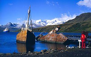 Viola (trawler) - Image: Grytviken Whaling Boats NOAA