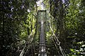 Gunung Mulu National Park. Sarawak, Borneo (14358333418).jpg
