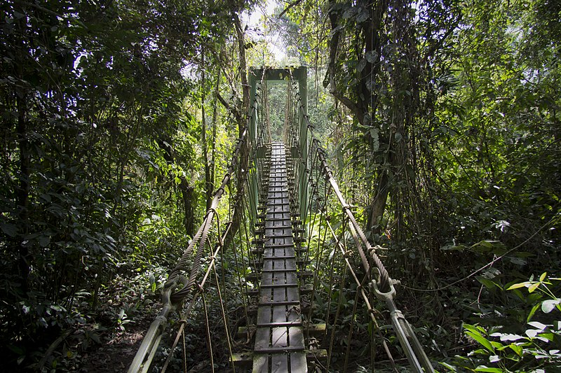 Mulu National Park in Borneo