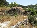 Hadassah Trail P1150532.JPG