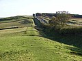 Hadrian's Wall National Trail east of Brocolitia - geograph.org.uk - 1017661.jpg